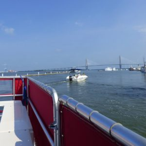 water taxi begins perfect day